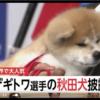 ザギトワ選手 もうすぐご対面 秋田犬