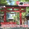 福島の神社に熊出没 熊画像あり