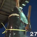 マグロ初競り2020にむけて大間漁港の水揚げ状況